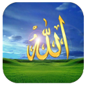 Islamic 3dCube Live Wall icon