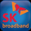 iDVRVue_SK icon
