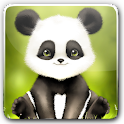 Panda Bobble Head Wallpaper icon