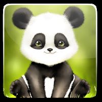 Panda Bobble Head Wallpaper 1.6