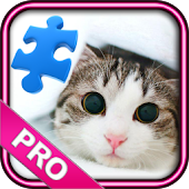 Cat Puzzles & Wallpapers Pro