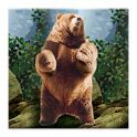 Dancing Bear Live Wallpaper icon