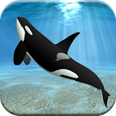 Ocean Games for Kids Free