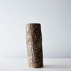 DIY Grow Your Own Shiitake Mushroom Log