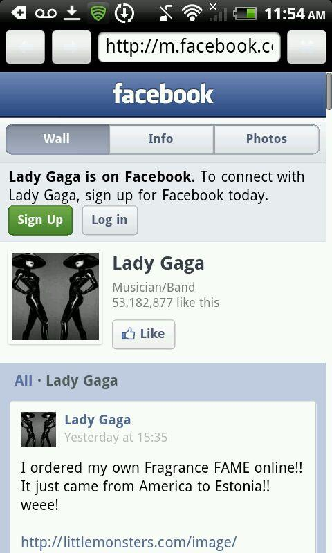 Lady Gaga Laid Bare! - screenshot