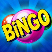 Download Bingo Casino APK to PC