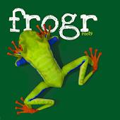 Frogr