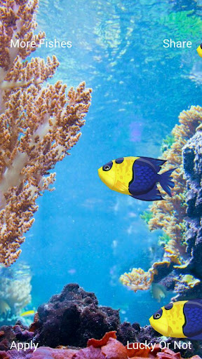 熱帶魚動態壁紙