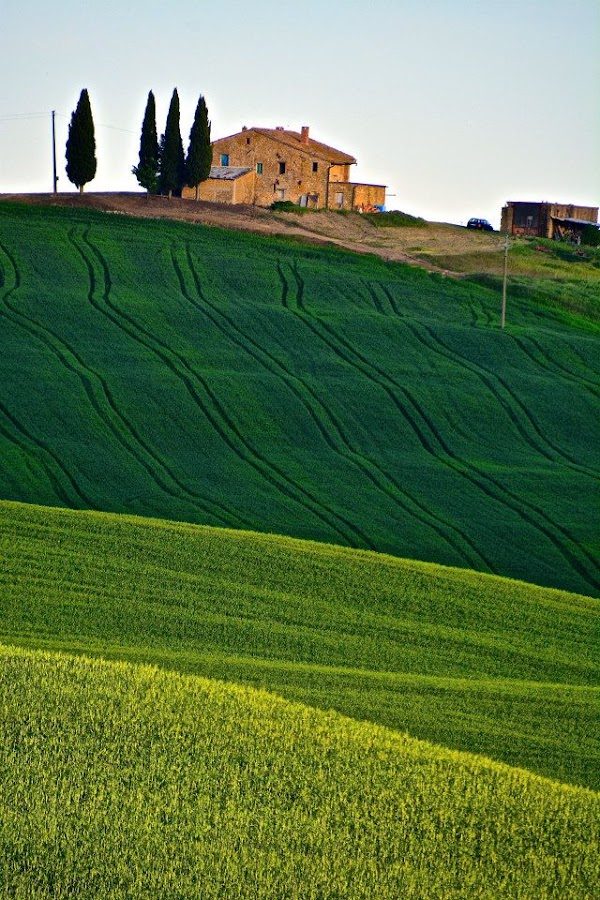 Tuscany by Mandy Dale - Novices Only Landscapes