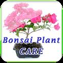 Bonsai Plant Care Manual