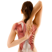 Prevent Upper Back & Neck Pain