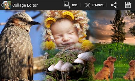 PicMix Free , Insta Collage 4.3 screenshot 497937