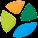 iBrisa logo
