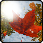 Falling Leaves Live Wallpaper icon