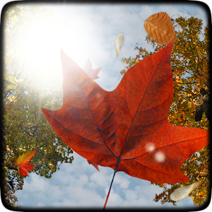 Falling Leaves Live Wallpaper 個人化 App LOGO-硬是要APP