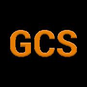 GCS (Glasgow Coma Scale)