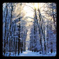 Winter Wallpaper 1.3