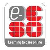 e-ESO