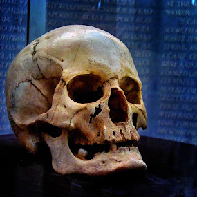 by Stojiljkovic  Zoran - Artistic Objects Other Objects ( skull serbia serbian turkis stevan sindjelic military museum tower nis srbija leader )