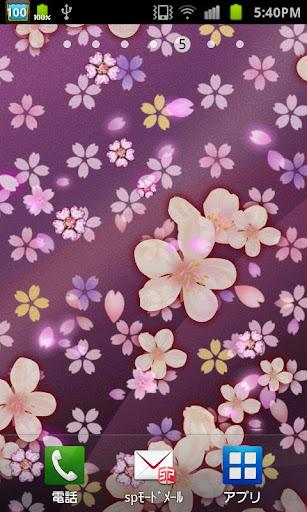 Cherry blossom  wallpaperu3000free 1.63 Windows u7528 3