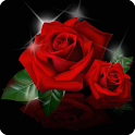 Love Flower Wallpaper