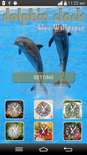 Dolphin Clock Live Wallpaper