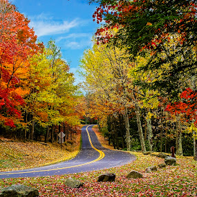 Country Roads - Colors of Fall by Deborah Felmey - Landscapes Forests ( country roads, west virginia, colors, fall, leaves, color, colorful, nature,  )
