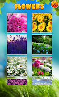 Screenshot of Flower Puzzles