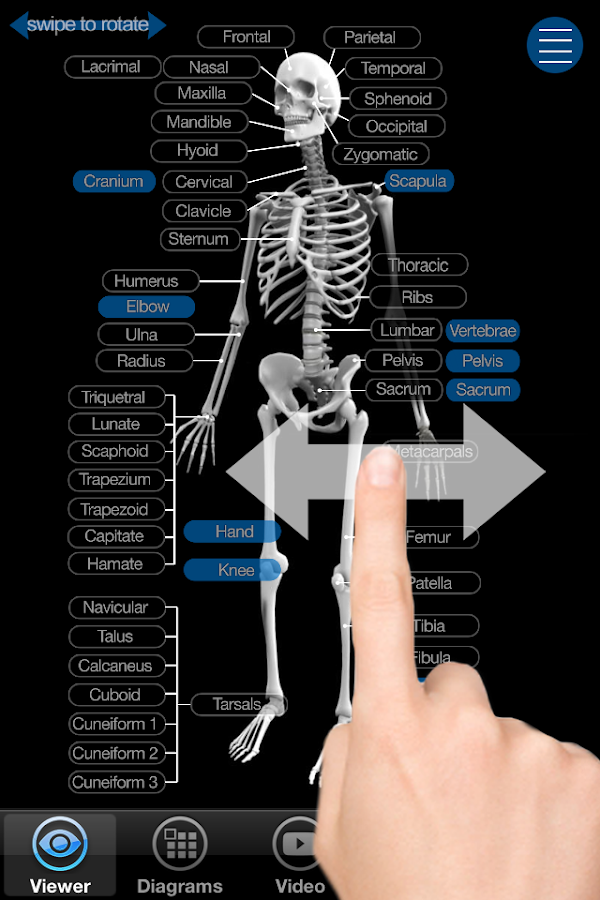 Skeletal anatomy 3d android apps on google play skeletal anatomy 3d screenshot ccuart Choice Image
