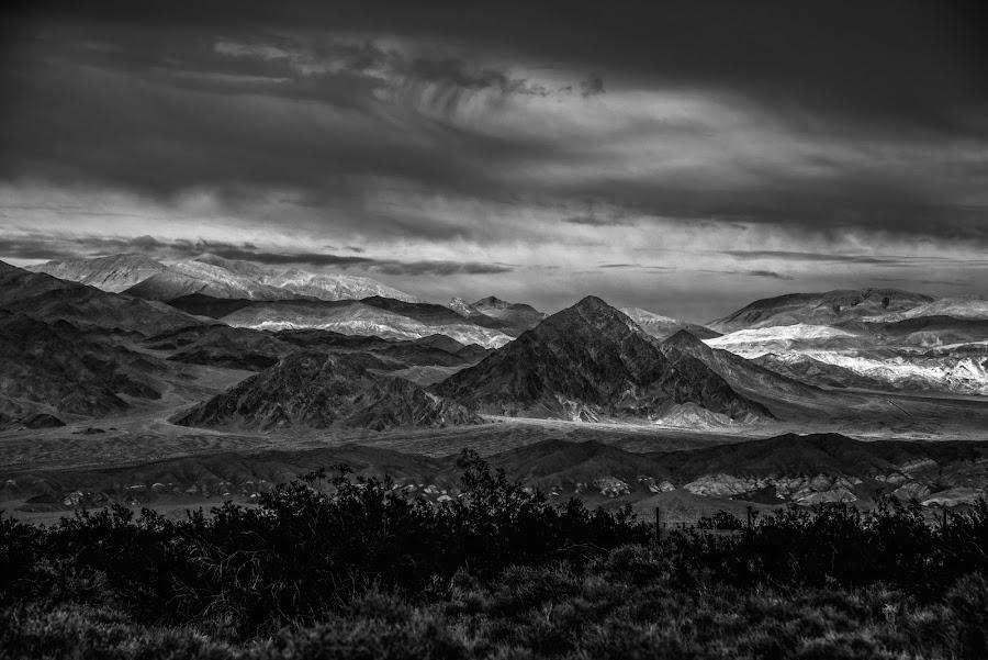 Desert Rain (B&W) by Mark Cote - Black & White Landscapes ( death valley, death valley national park, desert, virga rain, storm, stovepipe wells,  )