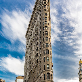Flat Iron by Dave Freeman - Buildings & Architecture Public & Historical