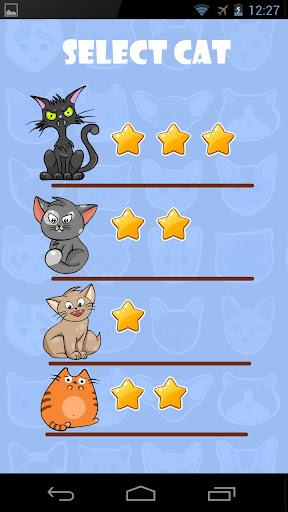 绘画课宠物猫