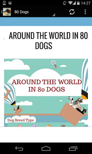 80 Dogs Around The World