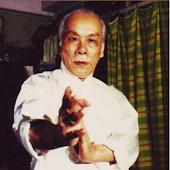 Lok Yiu Wing Chun