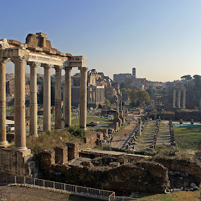 The Temple Of Saturn by Tony Murtagh - Buildings & Architecture Public & Historical ( temple, forum romana, rome, italy )