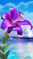 Screenshot of Flowers. Magic Touch Wallpaper