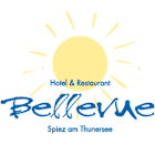 Bellevue icon