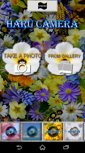 Haru Camera - Spring- screenshot thumbnail