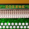 Hohner C#/D Button Accordion icon
