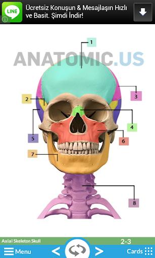 玩教育App|解剖闪存卡免費|APP試玩