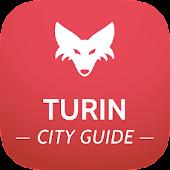 Turin Guide de Voyage