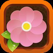 Flower Power - Home Garden