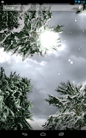 Screenshot of Winter Snowfall Free Wallpaper
