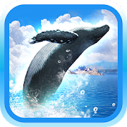 Game REAL WHALES Find the cetacean! APK for Windows Phone