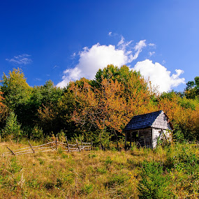 Lost in the woods by Poloca Tony - Landscapes Forests ( old house, clouds, sky, grass, forest, sun )
