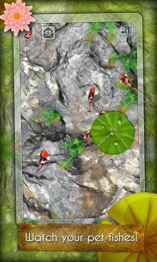 App free my koi pond android forums at for Koi pond game
