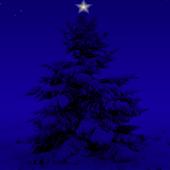 Christmas Snowfall