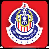 Las Chivas Rayadas