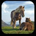 Pferd Animierte Wallpaper icon