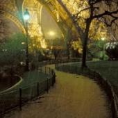 Paris Romantic Rain Live Wallp